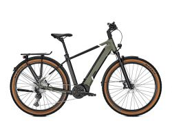 Entice 5.B Advance - urbangreen/magicblack matt - 625Wh - Herrenrad