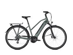 Endeavour 3.B Move - techgreen - 500Wh – Damenrad - Shimano Altus